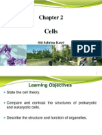 2. CELLS.pdf