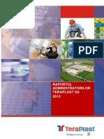 Raportul_administratorilor_2012
