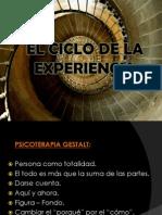 El Ciclo de La Experiencia