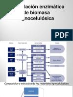 Degradación de Lignocelulosa