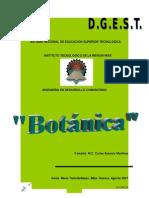 botanica-090908110022-phpapp02.doc