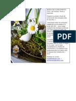Baños de Florecimiento 2015 de Hierbas