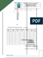 Formato Compresion Simple