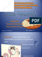 Exposiciondeparasitologa Malaria 121029134205 Phpapp01