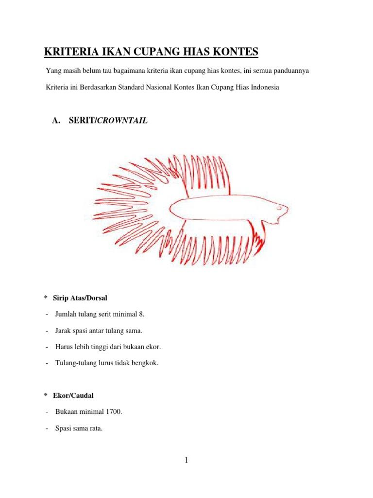 Kriteria Ikan Cupang Hias Kontes