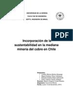 Incorporación de La Sustentabilidad en La Mediana Minería Del Cobre en Chile