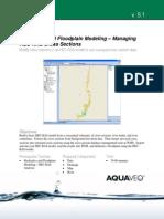 26 HydraulicsAndFloodplainModeling-HECRASManagingCrossSections