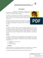Joana e Mariana - Faringite.pdf