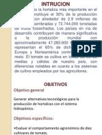 presentacion  de Jessica Cantos.pdf