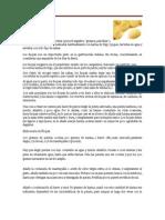 Platillos gastronómicos y tipos de cocción