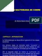 162334294-LIXIVIACION-Bacteriana-de-Cobre.ppt
