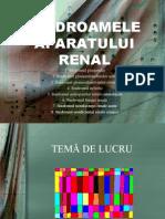 Sindroamele Aparatului Renal
