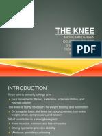 Kin 3305 Knee Presentation