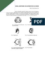 Manual de Oftalmologia Final