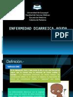 ENFERMEDAD DIARREICA-1