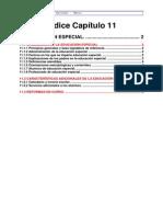 CAPITULO 11 INFORME OEI