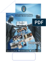 07353543 Prospecto 2013 unprg FINAL.