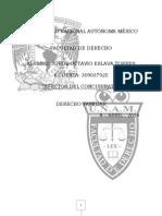 Efectos del concubinato.pdf