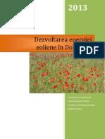 1 Raport - Dezvoltarea Energiei Eoliene in Dobrogea