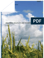 Publicly_Disclosed_MM_Rice_Price_Volatility_Report.pdf