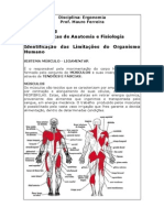 Noções Básicas de Anatomia e Fisiologia