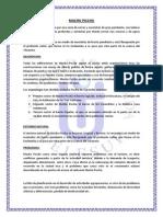 DIAGNOSTICO TURISTICO.docx