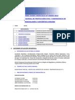 Informe Diario Onemi Magallanes 07.01.2015