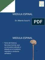 9MEDULA ESPINAL