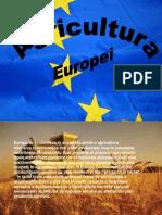 Agricultura Europei