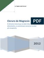 151895857 Cloruro de Magnesio