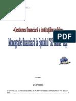 81107752-Monografie-Financiara-La-Spitalul-Sfanta-Maria-Iasi.doc
