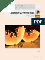Información Técnica Semilla de Papaya