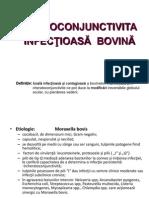 CHERATOCONJUNCTIVITA INFECTIOASA