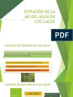 Meza-8.4-Administración de La Calidad Del Agua en Los Lagos