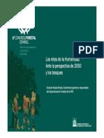 Política Forestal y Desarrollo Rural, Visión Desde La FAO