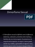 Dimorfismo
