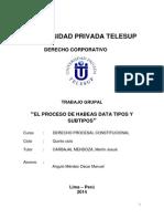 monografia de el proceso de habeas data tipos y subtipos....docx
