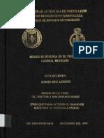 Medios de Defensa en El Proceso Laboral Mexicano