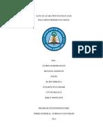 Satuan Acara Penyuluhan Phbs Satria