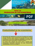 2.3 Producción en Los Ecosistemas (1)FDGF