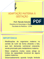 02.Modificacoes Sistemicas Da Gestacao Marcelo