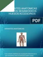 VARIANTES ANATOMICAS