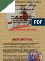 Caso Clinico Cardiaco.