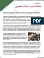 Medio Ambiente - Revista Ambientum - Gestión de Electrodomésticos Usados