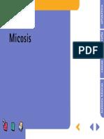 Micosis 3