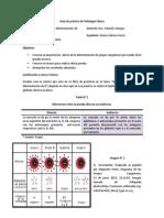Guía de Prácticas de Patología Clínica