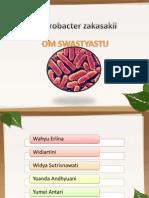 Enterobacter zakasakii 2