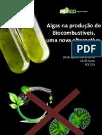 Algas Na Produção de Biocombustíveis, Uma Nova Alternativa