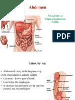 Abdominal physiology