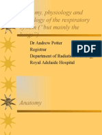 Anatomy, Physiology and Pathology of the Respiratory
